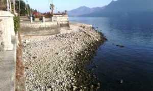 lago secca gen 16