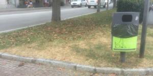 verde_degrado_vb_18_8.jpg