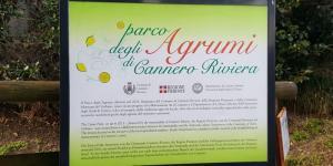 agrumi_cannero_1744.jpg